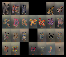 Photo Genetics - Chromosomes