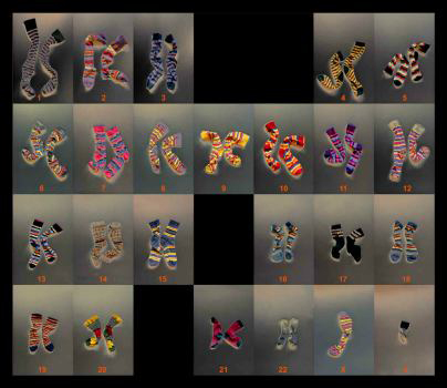 Photo Genetics Image 01 - Chromosome Socks